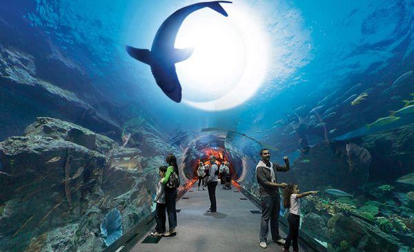 Dubai-Aquarium-600x366